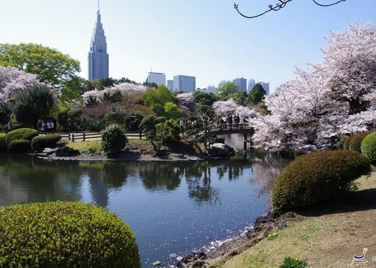 27. Shinjuku Gyoen National Garden