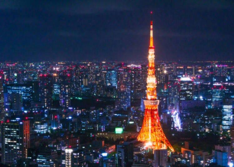 13.東京タワーから東京の夜景を眺める