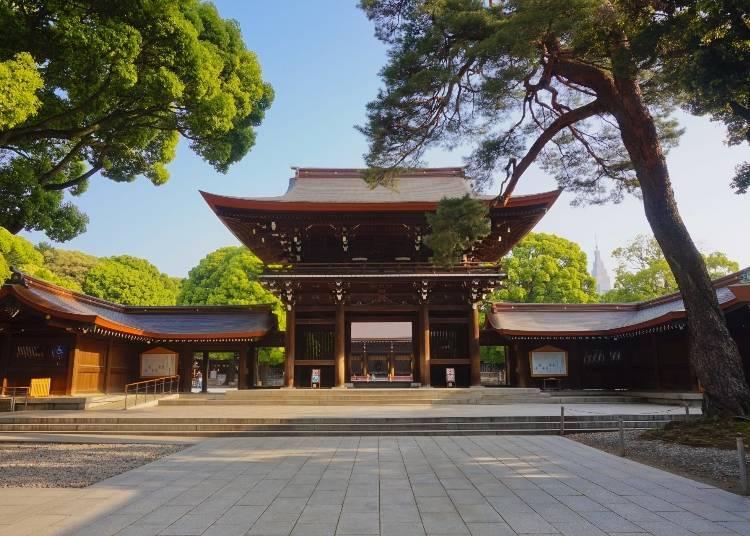 東京體驗⑥環繞充滿神聖氣氛的神社