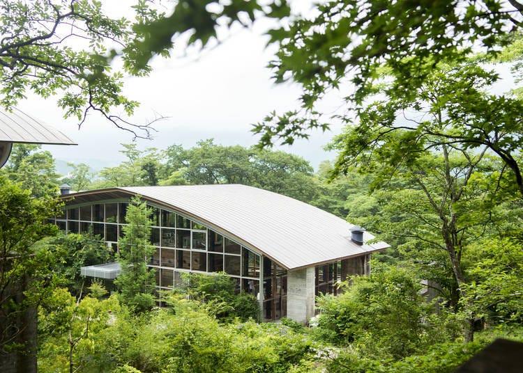 4. 센고쿠하라의 대자연을 온몸으로 느낄 수 있는 '하코네 리트리트 före(포레)'