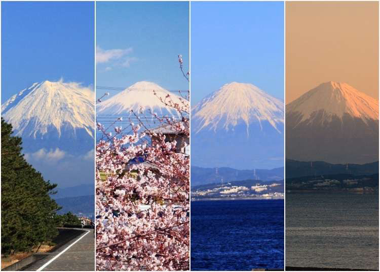 Day Trip to Yaizu, Shizuoka: Gorgeous Views of Mt. Fuji & Exquisite Seafood At This Picturesque Town South of Tokyo!