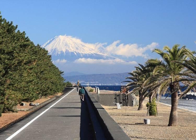 2. Mt. Fuji from the Beach: See Japan's iconic mountain while walking along the Tajirihama Coast