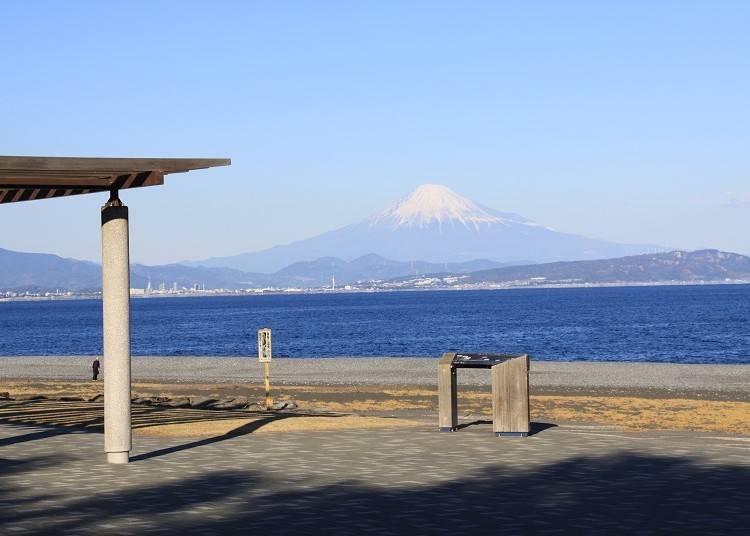 ③【富士山×芝生】石津海岸公園のベンチに座って富士山を独り占め