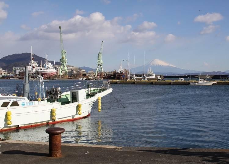 ④【富士山×漁船】小川港で漁船とのコラボレーションを楽しむ