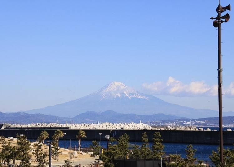 ⑥【富士山×海鮮グルメ】テラス席のBBQを富士山とともに味わう