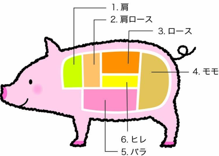 豚肉の日本語の部位名と特徴