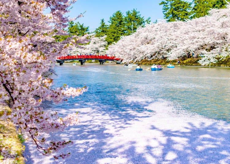 ① Hirosaki Park (Aomori Prefecture)