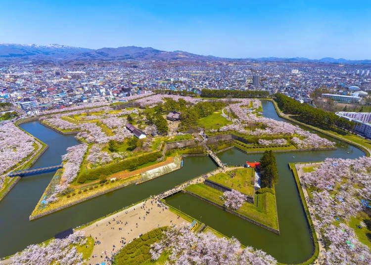 1. Goryokaku Cherry Blossom Festival (Hakodate City, Hokkaido)