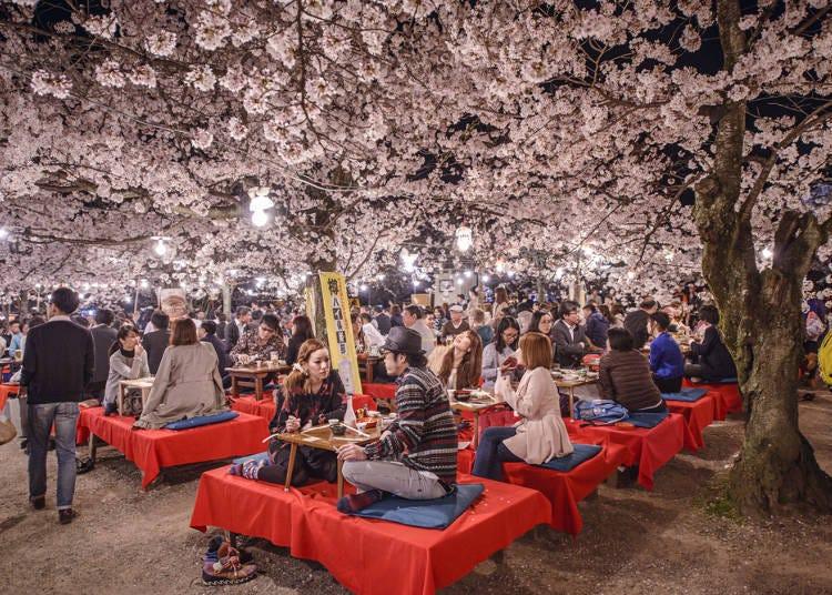1.櫻花祭到底是什麼樣的活動?