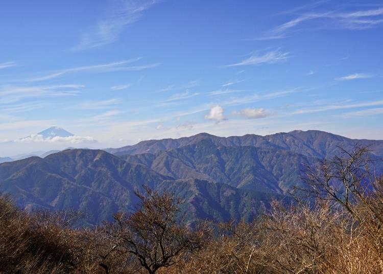 2.富士山と丹沢山系を一望できる大パノラマ【大山(おおやま)】