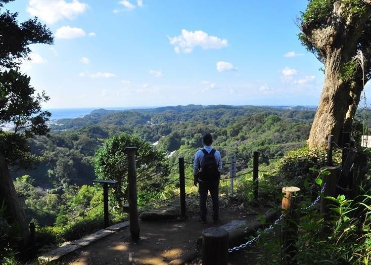 3. 가마쿠라의 역사와 자연을 감상할 수 있는 트레킹 코스 [가마쿠라 알프스]