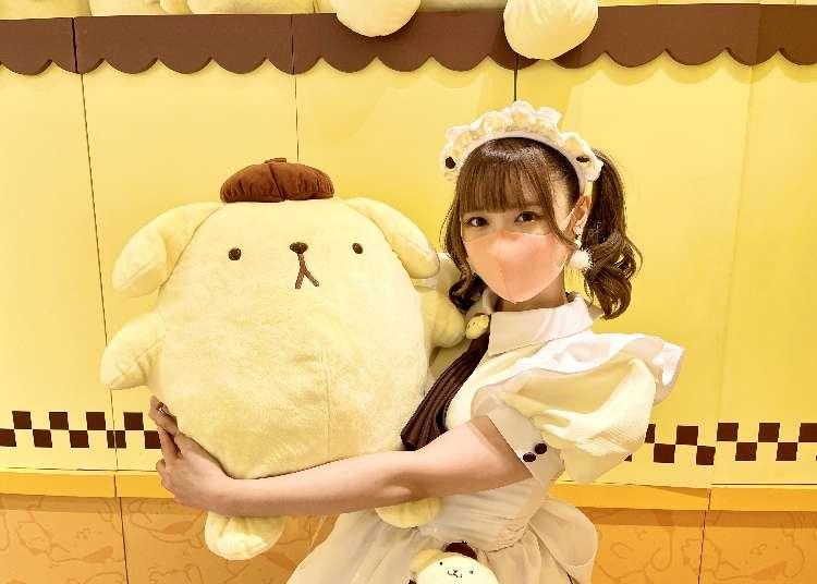 도쿄 하라주쿠의 새로운 명소 - 폼폼푸린과 메이드 카페의 컬래버레이션!
