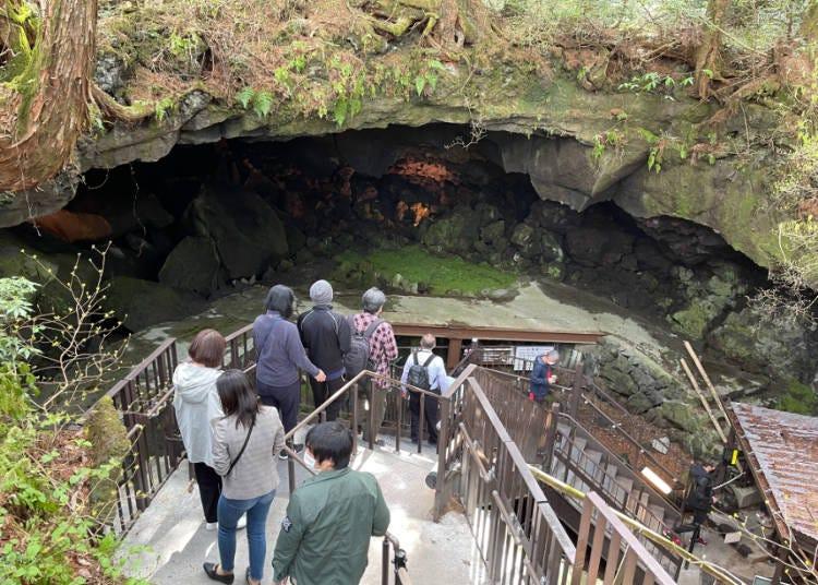 絶景④天然記念物の「鳴沢氷穴」で0度の氷柱の世界を鑑賞