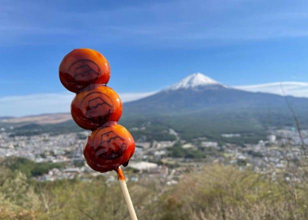 【2021最新】享受春光无限的美景!富士山周边春季必赏景点5选
