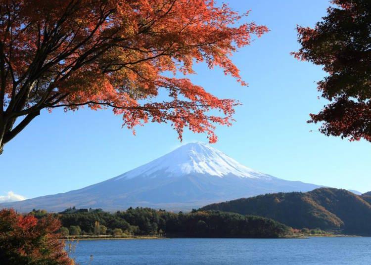 1. Mt. Fuji