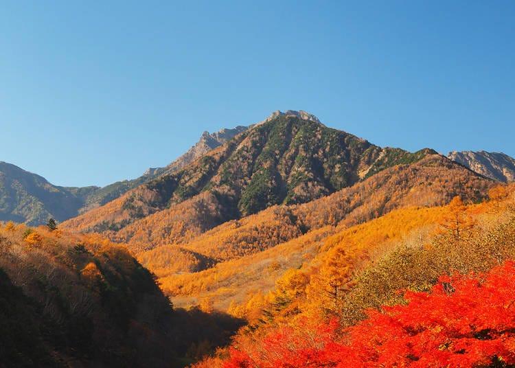 8. Yatsugatake Chushin-Kogen Quasi-National Park