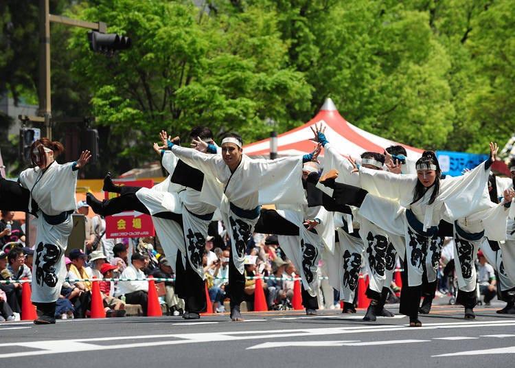 히로시마 꽃 축제