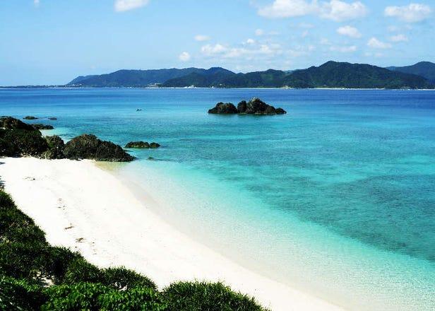 在美麗海灘享受潛水!日本奄美大島一定要體驗的活動19選