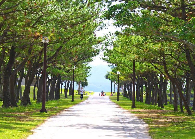 3.21世紀之森海灘