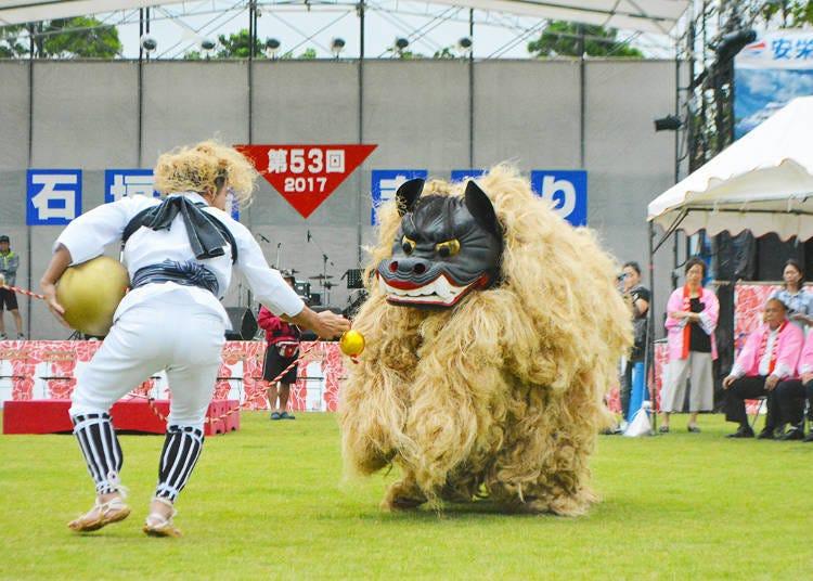 이시가키 섬 축제