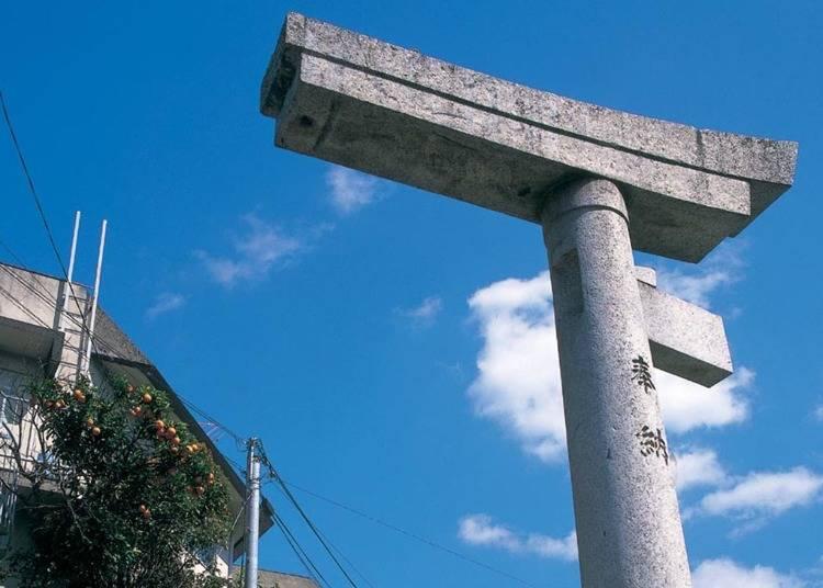6. Sanno Shrine (One-Legged Torii Arch & Camphor Trees)