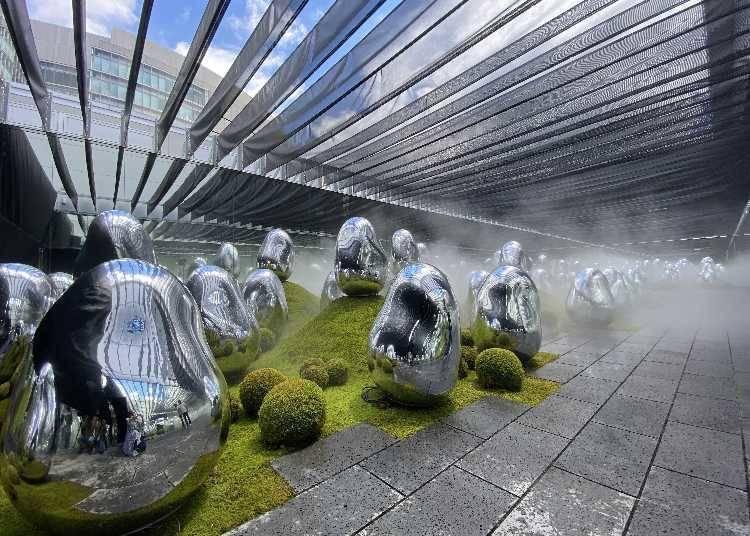 随着天气与时间变换风情/苔藓庭园中呼应的小宇宙群 ─固化光色, 日出与日落