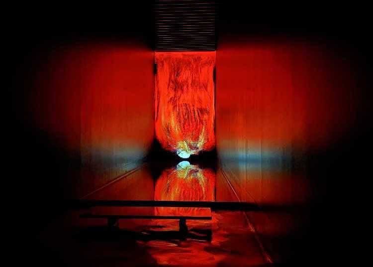 4月开放新展区!锁住观者目光的跃动生命之火/焰粒子世界