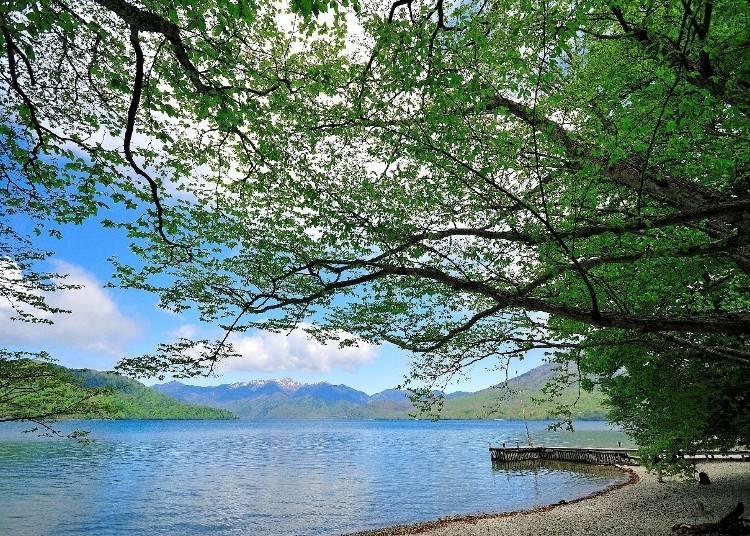 中禅寺湖畔の美しい景色で癒しを