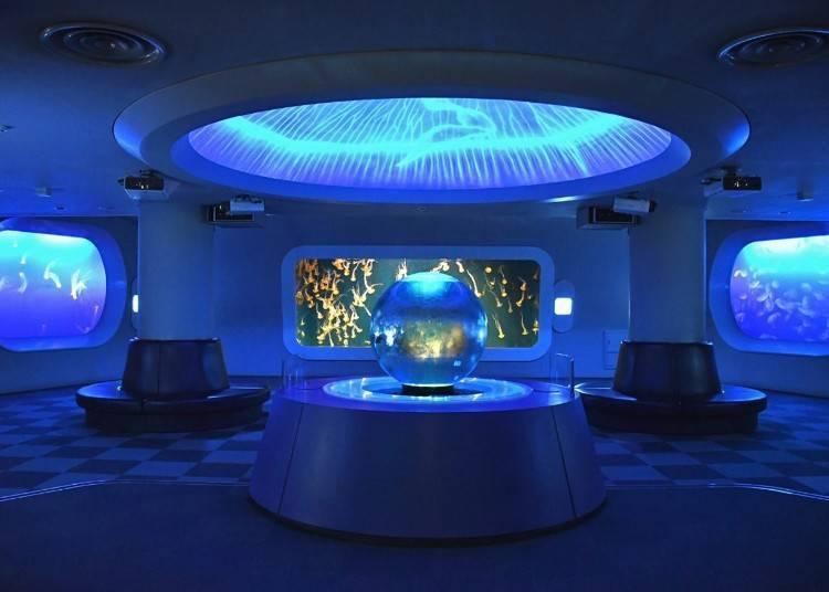 欣賞療癒的魚兒和水母「新江之島水族館」