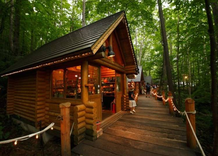 Ningle Terrace: Craft shops scattered throughout the forest