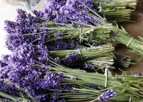 3. Farm Tomita for Hokkaido lavender products