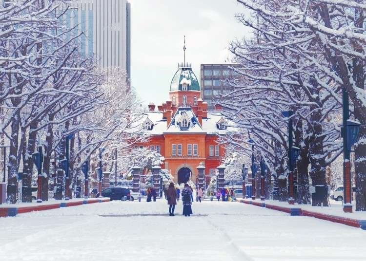 Breathtaking Hokkaido Views & More! 5 Must-Visit Spots in Sapporo - LIVE JAPAN