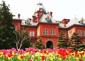 삿포로 여행-삿포로에서는 어디를 가야 할까? 추천 관광명소 5곳!