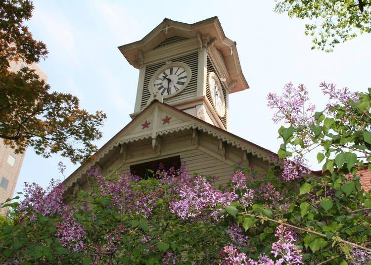 推薦景點1. 札幌的象徵!整點鐘響「札幌市鐘樓」