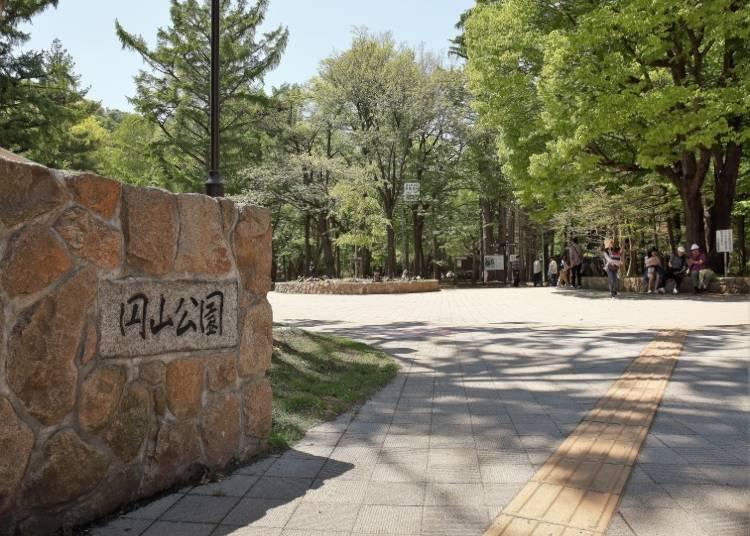 野生のリスに出会えるかも!札幌市民憩いの場「円山公園」