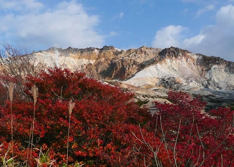 壯麗活火山~惠山