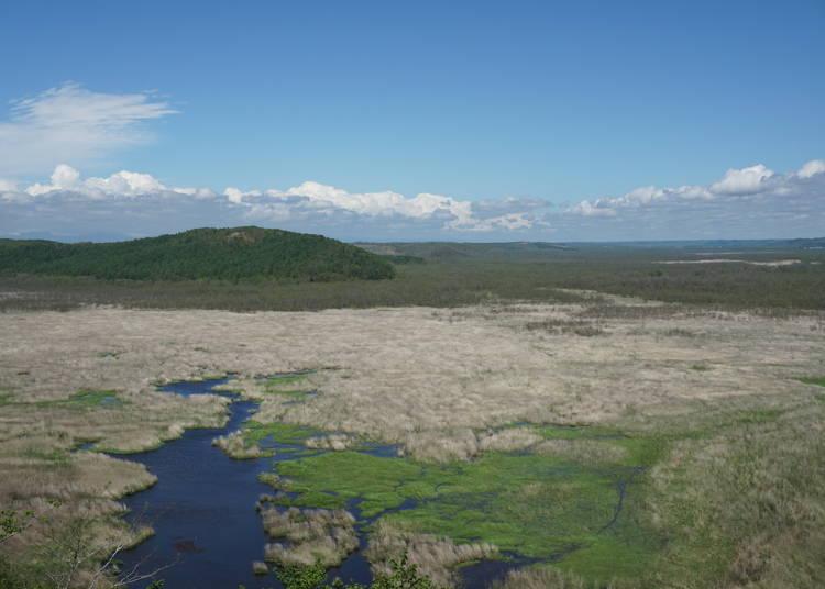 釧路濕原是如何形成的?