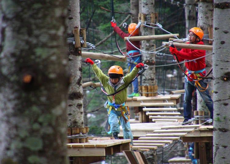 NAC推荐户外活动3 森林冒险游乐场