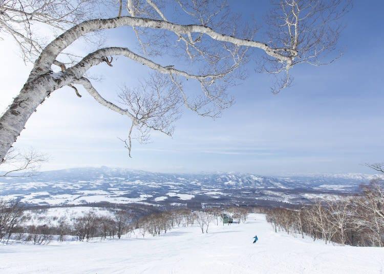 How to Get to the Niseko Ski Resorts