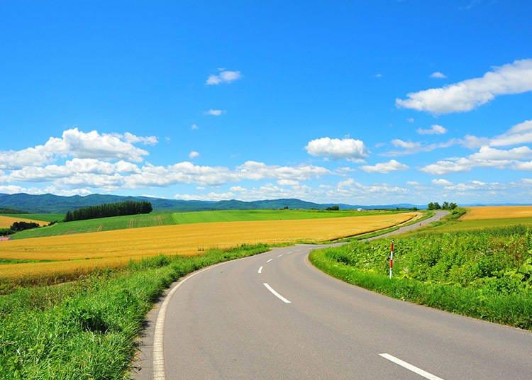北海道夏季(6~8月)的平均气温・降水量