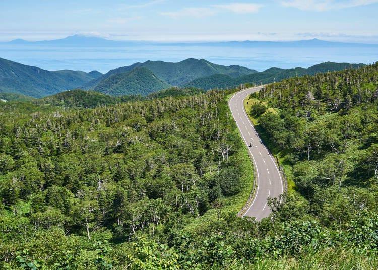 1.北海道的土地比东京或是大阪辽阔很多!做行程规划时要多预留一些时间