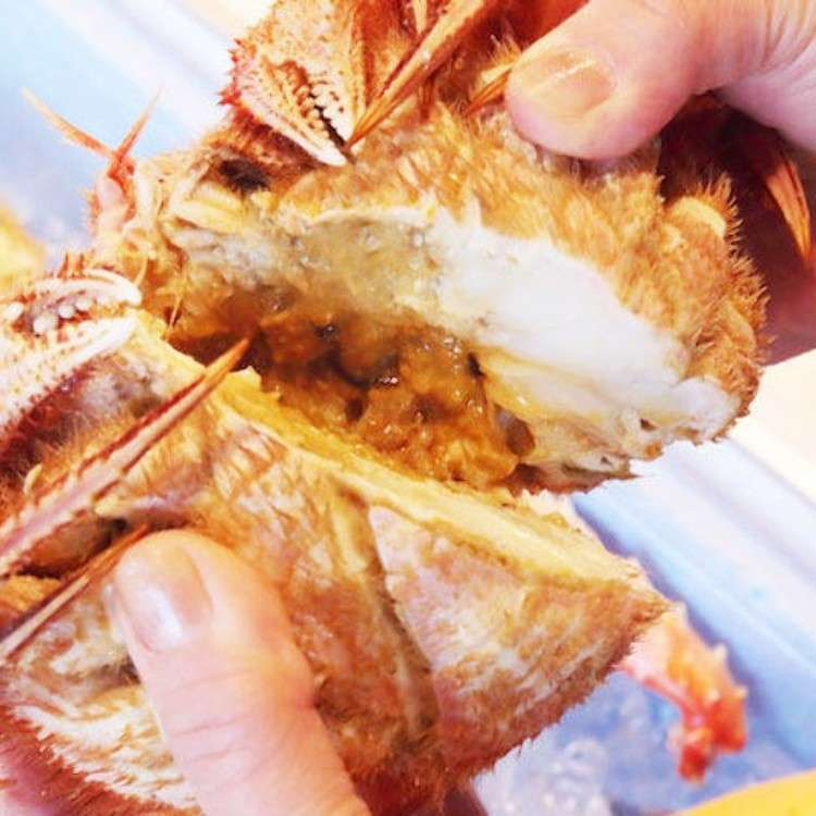 Things to do in Sapporo: Exploring Nijo Market - Fresh Seafood Bowls & Crab!