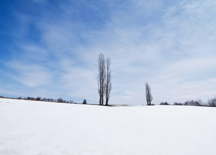 ■Winter in Hokkaido (December - March)