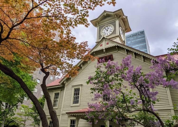 繁華街を楽しみたいなら「札幌」に泊まる