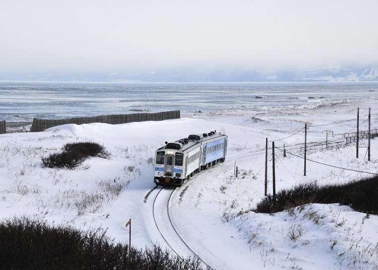 週末鉄道旅行の参考に!ラベンダー畑も見られる「北海道おトクなきっぷ&季節限定観光列車」