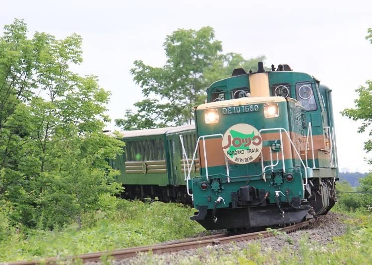 Kushiro Shitsugen Norokko Train: See the magnificent Kushiro Shitsugen Wetlands! (Seasonal limited train)