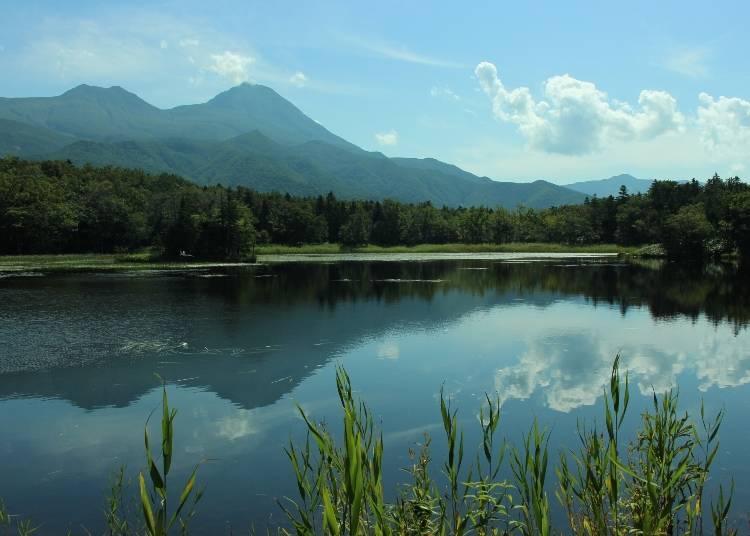 前往北海道熱門觀光景點3:世界遺產.知床