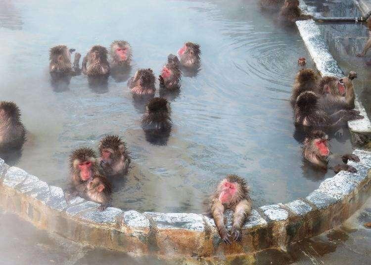 北海道は日本屈指の温泉天国!登別、洞爺湖、定山渓…人気の温泉地まとめ