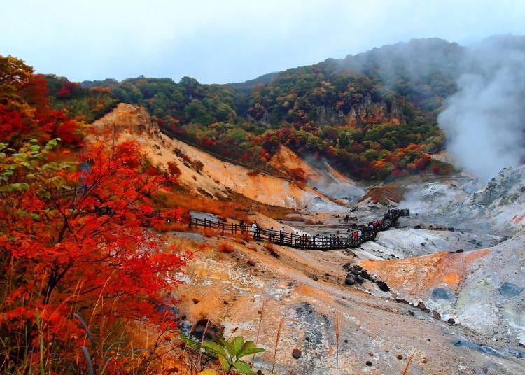 北海道賞楓景點③登別「地獄谷」的楓葉將白煙升起的火山口遺跡周圍染上艷麗的紅色