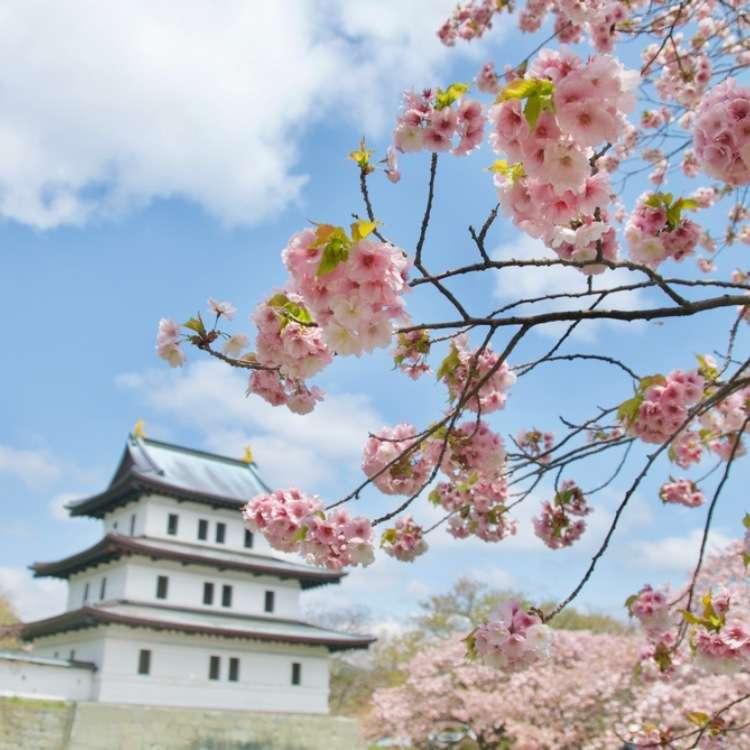 """""""桜前線""""の終着点を追って。「北海道の桜スポット」8選【道南~道東】"""